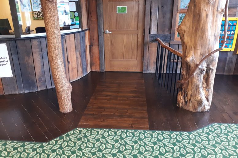 dental office with trees and wood floors image